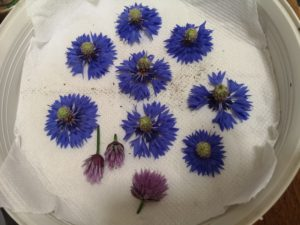 Chives cornflowers
